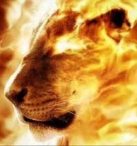 Lion in flames